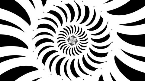 Black and white elastic twisted bands tunnel Animation