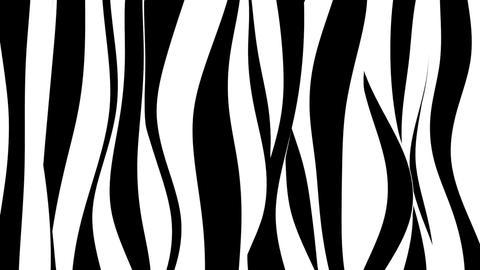 Black and white curvy zebra stripes Animation