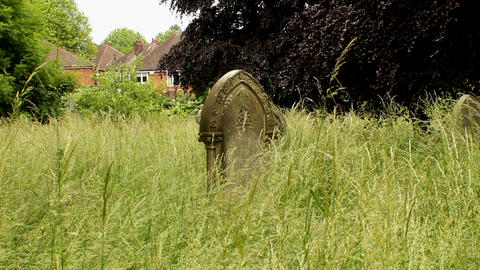 Neglected Forgotten, Overgrown With Grass Graves 2 stock footage