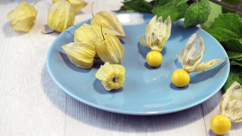Physalis fruits Footage