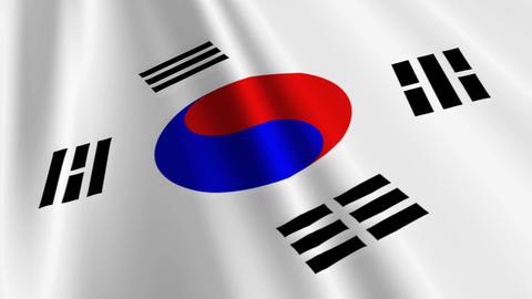 SouthKoreaFlagLoop03 Stock Video Footage