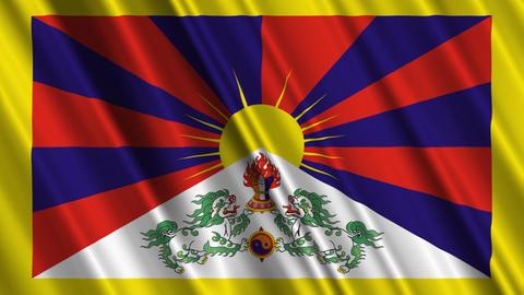 TibetFlagLoop01 Stock Video Footage