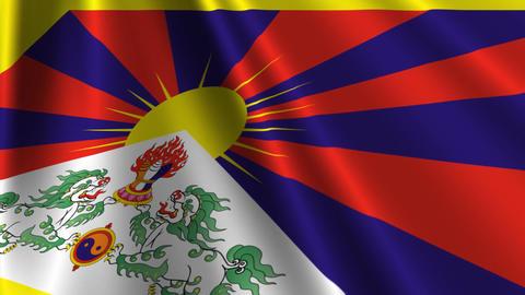 TibetFlagLoop03 Stock Video Footage