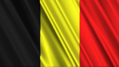 BelgiumFlagLoop01 Stock Video Footage