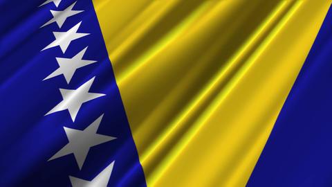 BosniaHerzegovinaFlagLoop02 Stock Video Footage
