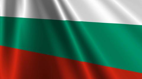 BulgariaFlagLoop03 Stock Video Footage