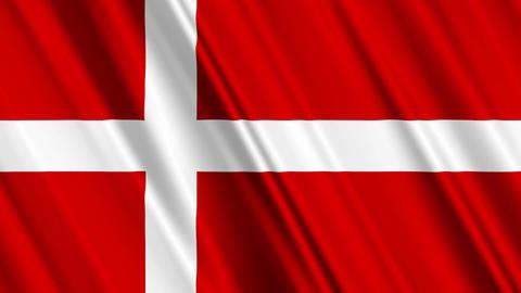 DenmarkFlagLoop01 Stock Video Footage