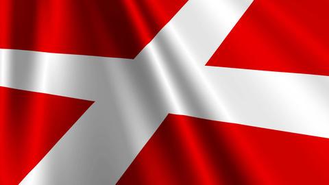 DenmarkFlagLoop03 Stock Video Footage