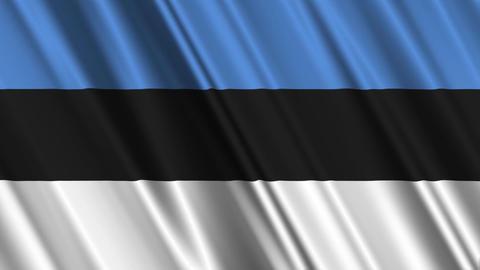 EstoniaFlagLoop01 Stock Video Footage