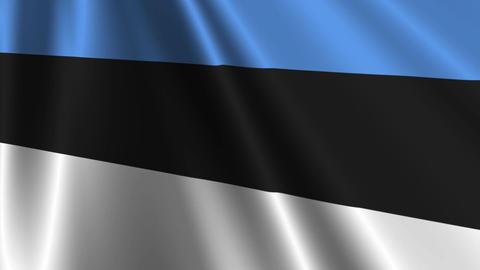 EstoniaFlagLoop03 Stock Video Footage