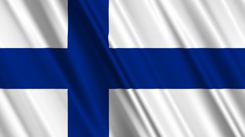 FinlandFlagLoop01 Stock Video Footage