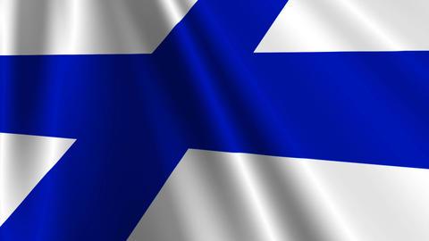 FinlandFlagLoop03 Stock Video Footage