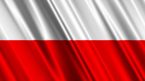 PolandFlagLoop01 Stock Video Footage