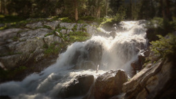 (1216s) Colorado Rocky Mountains Alpine Meadow... Stock Video Footage