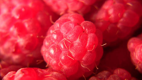 raspberry Stock Video Footage