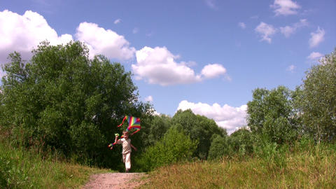 Boy with kite in park Stock Video Footage