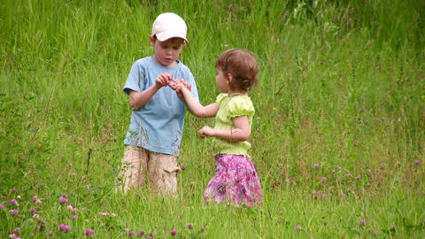Children explore bug Stock Video Footage