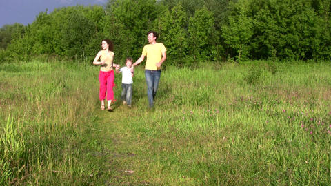family with boy in park Stock Video Footage