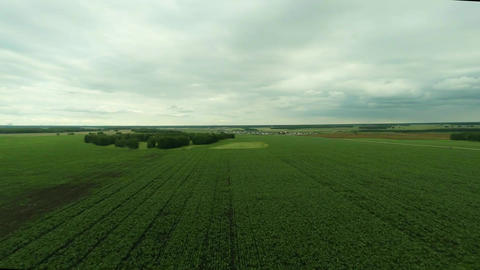 Aerial shot of the field Footage