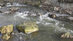 Turbulent mountain river Footage
