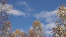 White Clouds Are Floating In The Blue Autumn S stock footage