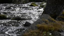 Stream course, rippling water ビデオ