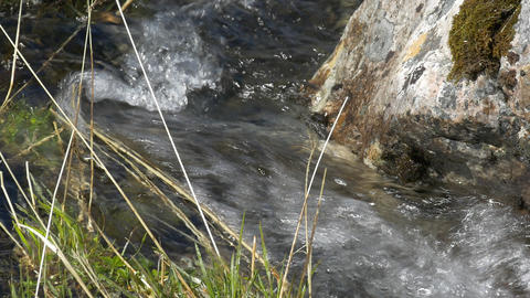 Stream course, rippling water Footage