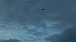 Plane flies against the backdrop of a cloudy e Footage