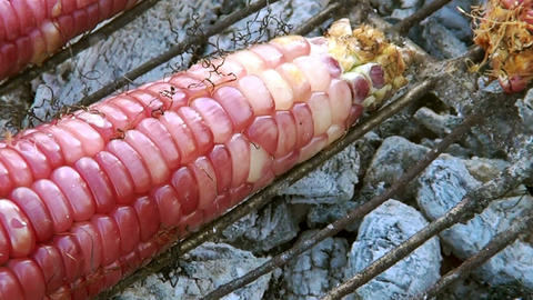 Charcoal grilling corn or grilled Stock Video Footage