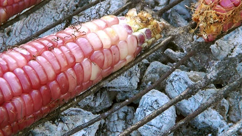 Charcoal Grilling Corn Or Grilled stock footage