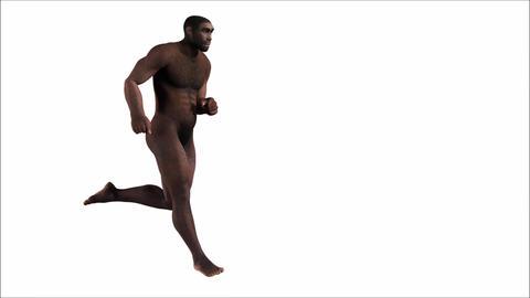 Running Homo Erectus stock footage