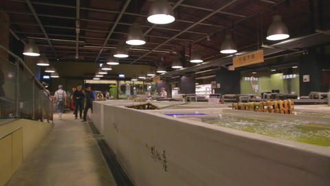 people hunting for sushi in Taipei fish market Stock Video Footage