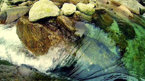 Crystal Clear Water Wild Creek Stock Video Footage