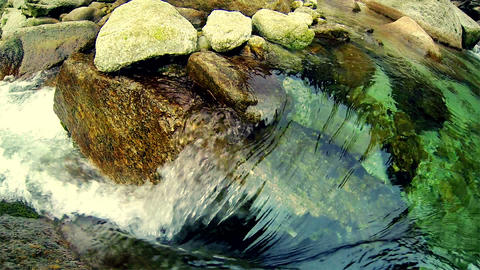 Crystal Clear Water Wild Creek Footage