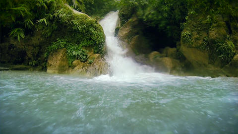 Wild Creek Footage