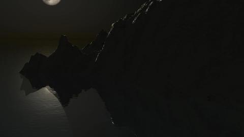 Moonlight Flight Stock Video Footage