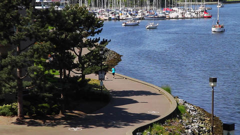 compilation - false creek south west Stock Video Footage