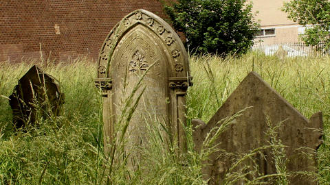 Neglected forgotten graves overgrown with grass Live Action