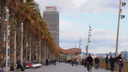 Passeig Maritim in Barcelona Stock Video Footage