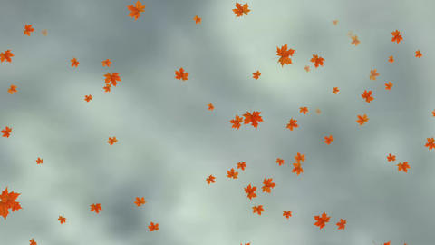 Falling Leaves on cloudy Sky Animation Stock Video Footage