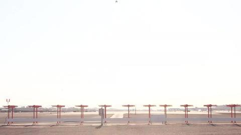Airplane Is Landing down the runway Stock Video Footage