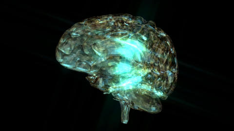 Animation of a Human Brain Animation