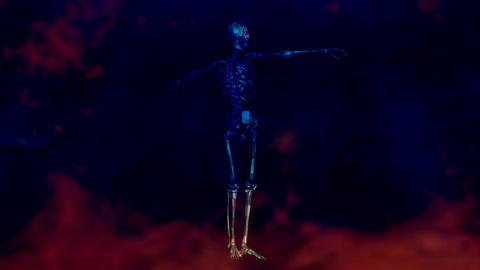 Animation of a Human Skeleton Stock Video Footage
