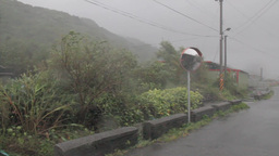 Typhoon causing strong wind and rain on a road Footage