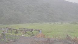 Typhoon Matmo Blowing across a farm Footage