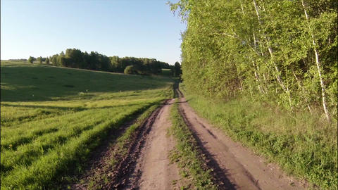Aerial Stock Footage Dirt road in Woods Footage