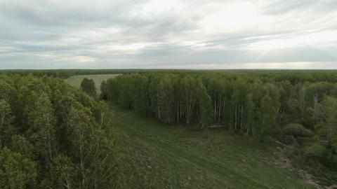 Aerial stock footage of Forest and Farm Fields Stock Video Footage
