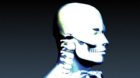 Xray Animation Of Human Skeleton stock footage