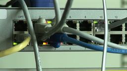 A Computer Server Live Action