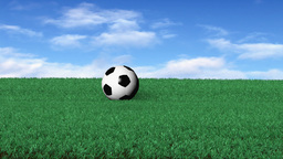 Soccerball On Grass stock footage